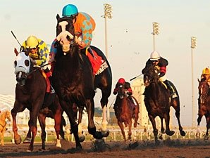 Straight Story in Big Upset in Autumn Stakes