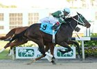 Watch Me Go outfinished fellow longshot Crimson Knight to win the Tampa Bay Derby.
