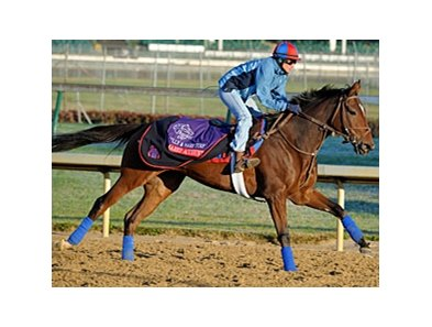 Shared Account