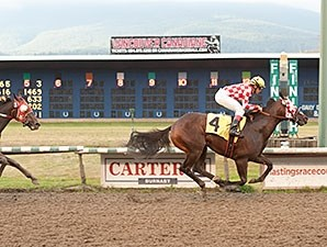 Party Pooper wins the 2014 New Westminster Handicap.