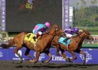 "Man of Iron (right) takes the Marathon by a nose over Cloudy's Knight. <br><a target=""blank"" href=""http://www.bloodhorse.com/horse-racing/photo-store?ref=http%3A%2F%2Fpictopia.com%2Fperl%2Fgal%3Fprovider_id%3D368%26ptp_photo_id%3D8609279%26ref%3Dstory"">Order This Photo</a>"