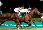 General Election Wins Jefferson Cup on Turf