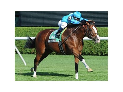 "Get Stormy won the 2011 Bernard Baruch by 2 3/4 lengths.<br><a target=""blank"" href=""http://www.bloodhorse.com/horse-racing/photo-store?ref=http%3A%2F%2Fpictopia.com%2Fperl%2Fgal%3Fprovider_id%3D368%26ptp_photo_id%3D9161036%26ref%3Dstory"">Order This Photo</a>"