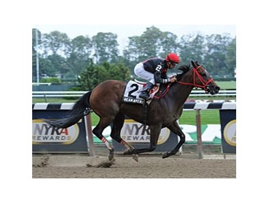 "Sean Avery returns a winner in the Affiliate Stakes.<br><a target=""blank"" href=""http://photos.bloodhorse.com/AtTheRaces-1/at-the-races-2012/22274956_jFd5jM#!i=2074529938&k=sHbJRM8"">Order This Photo</a>"