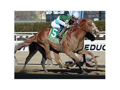 Declan's Warrior flies late to win the Bay Shore Stakes.