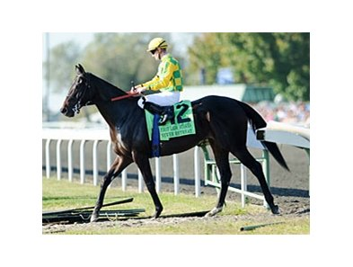 Never Retreat