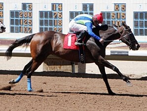 Ticket to Broadway wins the Dr. O. G. Fischer Memorial Handicap.