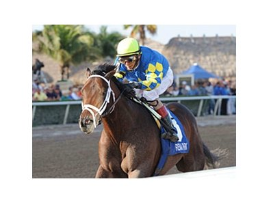 Thunder Moccasin