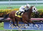 "Fast Anna<br><a target=""blank"" href=""http://photos.bloodhorse.com/AtTheRaces-1/At-the-Races-2014/i-R5CDPmX"">Order This Photo</a>"