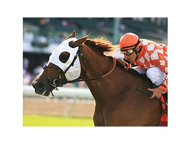 Presious Passion has a record of 5-5-1 in 14 starts at Monmouth.