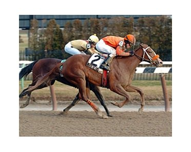"Paint Me Red comes from off the pace under Ramon Dominguez to win her first stakes race.<br><a target=""blank"" href=""http://www.bloodhorse.com/horse-racing/photo-store?ref=http%3A%2F%2Fpictopia.com%2Fperl%2Fgal%3Fprovider_id%3D368%26ptp_photo_id%3D3286940%26ref%3Dstory"">Order This Photo</a>"
