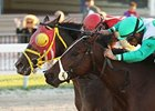 Ducduc outside and Csaba finish in a dead heat in the Fred W. Hooper Handicap.