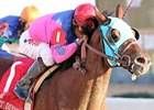 Gourmet Dinner won the 2010 Delta Downs Jackpot.