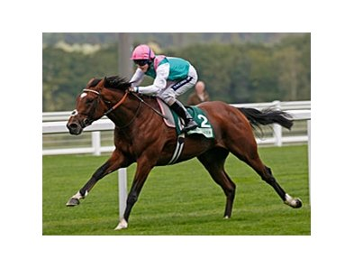 "Frankel cruises in the Juddmonte Royal Lodge Stakes.<br><a target=""blank"" href=""http://www.bloodhorse.com/horse-racing/photo-store?ref=http%3A%2F%2Fpictopia.com%2Fperl%2Fgal%3Fprovider_id%3D368%26ptp_photo_id%3D9204519%26ref%3Dstory"">Order This Photo</a>"