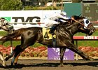 "Swaps winner Skipshot<br><a target=""blank"" href=""http://www.bloodhorse.com/horse-racing/photo-store?ref=http%3A%2F%2Fpictopia.com%2Fperl%2Fgal%3Fprovider_id%3D368%26ptp_photo_id%3D9110110%26ref%3Dstory"">Order This Photo</a>"