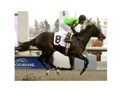 Cascading returned to the winner's circle as she captured the Glorious Song Stakes at Woodbine.