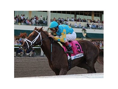 "Eskendereya<br><a target=""blank"" href=""http://www.bloodhorse.com/horse-racing/photo-store?ref=http%3A%2F%2Fpictopia.com%2Fperl%2Fgal%3Fprovider_id%3D368%26ptp_photo_id%3D8802807%26ref%3Dstory"">Order This Photo</a>"