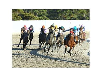 The 2012 running of the Delta Downs Jackpot.