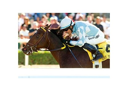 "Grade I winner Idiot Proof has been retired to stud.<br><a target=""blank"" href=""http://www.bloodhorse.com/horse-racing/photo-store?ref=http%3A%2F%2Fpictopia.com%2Fperl%2Fgal%3Fprovider_id%3D368%26ptp_photo_id%3D3158279%26ref%3Dstory"">Order This Photo</a>"
