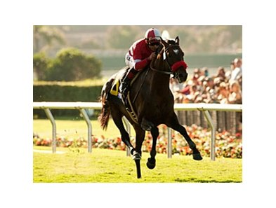 "Acclamation leads the way in the Eddie Read.<br><a target=""blank"" href=""http://www.bloodhorse.com/horse-racing/photo-store?ref=http%3A%2F%2Fpictopia.com%2Fperl%2Fgal%3Fprovider_id%3D368%26ptp_photo_id%3D9608630%26ref%3Dstory"">Order This Photo</a>"