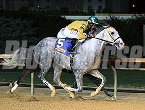 Halter Off wins the 2014 West Virginia Dash for Cash Breeders' Classic.