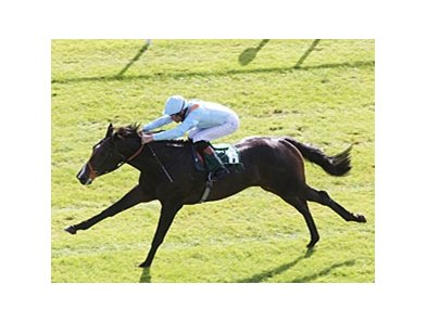 Toormore rolls to victory in the Goffs Vincent O'Brien National Stakes. 