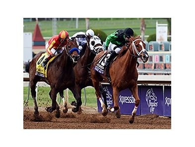 "Work All Week<br><a target=""blank"" href=""http://photos.bloodhorse.com/BreedersCup/2014-Breeders-Cup/Sprint/i-NDb39fp"">Order This Photo</a>"