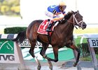 "Champagne winner Uncle Mo is a perfect 2 for 2.<br><a target=""blank"" href=""http://www.bloodhorse.com/horse-racing/photo-store?ref=http%3A%2F%2Fpictopia.com%2Fperl%2Fgal%3Fprovider_id%3D368%26ptp_photo_id%3D9226126%26ref%3Dstory"">Order This Photo</a>"