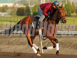 Inglorious - Woodbine May 31, 2011.