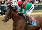 "Ky. Derby winner Animal Kingdom faces familiar foes and new faces in the Preakness Stakes.<br><a target=""blank"" href=""http://www.bloodhorse.com/horse-racing/photo-store?ref=http%3A%2F%2Fpictopia.com%2Fperl%2Fgal%3Fprovider_id%3D368%26ptp_photo_id%3D9517753%26ref%3Dstory"">Order This Photo</a>"