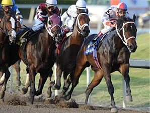 Tackleberry wins the 2011 Gulfstream Park Handicap.