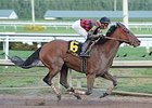River Seven wins the Harlan's Holiday Stakes.