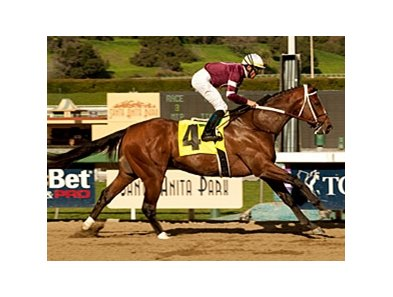 "Tapizar and Garrett Gomez are in control in the Sham Stakes.<br><a target=""blank"" href=""http://www.bloodhorse.com/horse-racing/photo-store?ref=http%3A%2F%2Fpictopia.com%2Fperl%2Fgal%3Fprovider_id%3D368%26ptp_photo_id%3D9372191%26ref%3Dstory"">Order This Photo</a>"