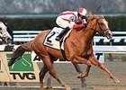 "Leave the Light On won the 2014 Remsen. <br><a target=""blank"" href=""http://photos.bloodhorse.com/AtTheRaces-1/At-the-Races-2014/i-7dnjQTs"">Order This Photo</a>"