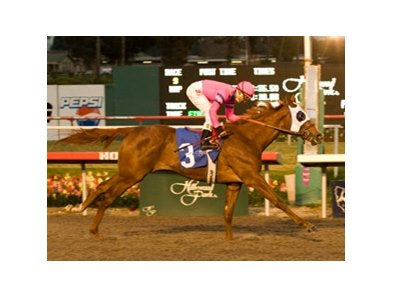 "Blind Luck winning the Hollywood Starlet Stakes (gr. I)<br><a target=""blank"" href=""http://www.bloodhorse.com/horse-racing/photo-store?ref=http%3A%2F%2Fpictopia.com%2Fperl%2Fgal%3Fprovider_id%3D368%26ptp_photo_id%3D8710491%26ref%3Dstory"">Order This Photo</a>"