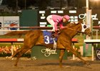 "Blind Luck seeks her 4th grade I in the Santa Anita Oaks.<br><a target=""blank"" href=""http://www.bloodhorse.com/horse-racing/photo-store?ref=http%3A%2F%2Fpictopia.com%2Fperl%2Fgal%3Fprovider_id%3D368%26ptp_photo_id%3D8710491%26ref%3Dstory"">Order This Photo</a>"