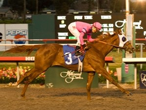 Blind Luck wins the 2009 Starlet.