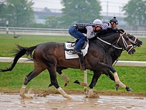 Stately Victor works at the Churchill Downs Training Center on April 23, 2010.