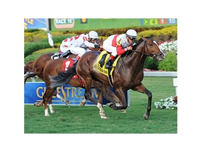 Data Link