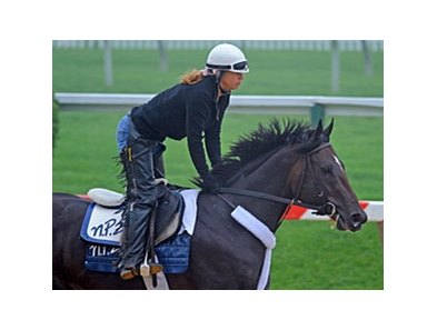 "Dialed In<br><a target=""blank"" href=""http://www.bloodhorse.com/horse-racing/photo-store?ref=http%3A%2F%2Fpictopia.com%2Fperl%2Fgal%3Fprovider_id%3D368%26ptp_photo_id%3D9532042%26ref%3Dstory"">Order This Photo</a>"