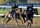 "J. B.'s Thunder (outside) breezed a half-mile in :47-flat at Keeneland.<br><a target=""blank"" href=""http://www.bloodhorse.com/horse-racing/photo-store?ref=http%3A%2F%2Fpictopia.com%2Fperl%2Fgal%3Fprovider_id%3D368%26ptp_photo_id%3D9243060%26ref%3Dstory"">Order This Photo</a>"