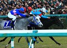 War Emblem Filly Wins at Top Level at Hanshin