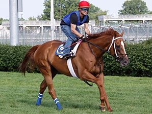 Wise Dan, Others Drill for CD's Firecracker