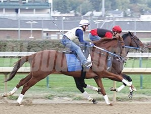 Haynesfield (outside) and Kensei work at Churchill Downs on October 24, 2010.