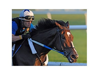 Reigning Horse of the Year Rachel Alexandra worked at Saratoga in 1:01.30.
