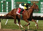 Hystericalady will sell at Keeneland Nov. 3.
