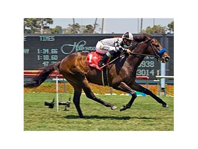 "Whatsthescript has been retired to stud.<br><a target=""blank"" href=""http://www.bloodhorse.com/horse-racing/photo-store?ref=http%3A%2F%2Fpictopia.com%2Fperl%2Fgal%3Fprovider_id%3D368%26ptp_photo_id%3D4968554%26ref%3Dstory"">Order This Photo</a>"