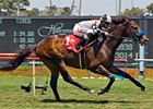 "Whatsthescript, shown winning the 2008 American Handicap, looks to repeat in 2009.<br><a target=""blank"" href=""http://www.bloodhorse.com/horse-racing/photo-store?ref=http%3A%2F%2Fpictopia.com%2Fperl%2Fgal%3Fprovider_id%3D368%26ptp_photo_id%3D4968554%26ref%3Dstory"">Order This Photo</a>"