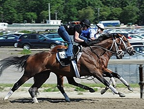 Palace Malice at Belmont Park June 1.