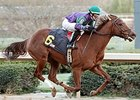 Arienza wins Oaklawn Park debut